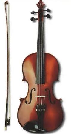 струнный смычковый инструмент скрипичного семейства