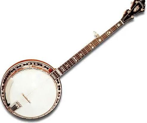 Банджо-струнный щипковый инструмент